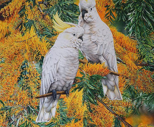 Heidi-Willis_Cockatoos_Bird-Painting_Artist_Botanical_Australian_1
