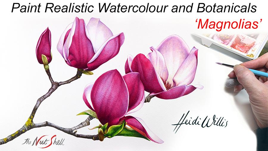 Heidi Willis_Online Painting Tutorial_Magnolias_botanical_watercolor