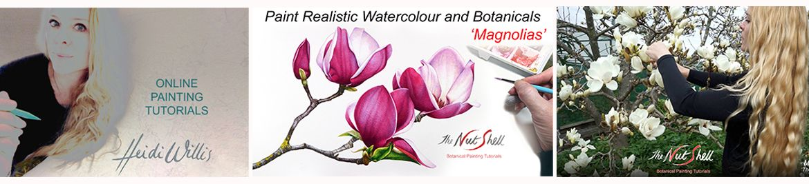Heidi-Willis_Online-watercolour_botanical-painting_tutorials_magnolias