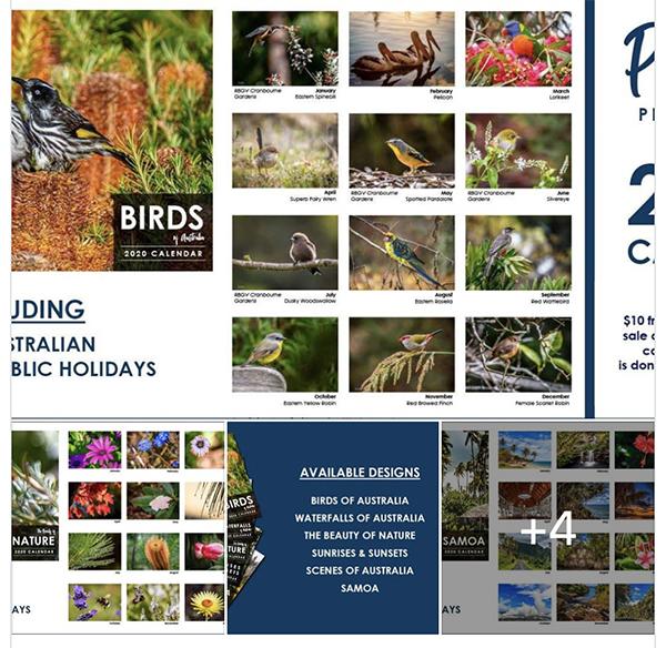 australian calendar_bird_wildlife_photography_PhilShar