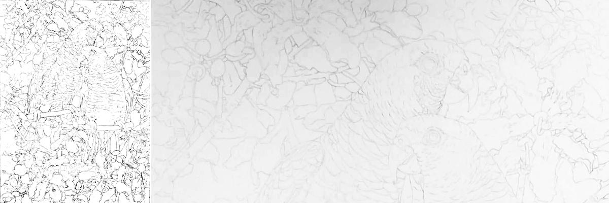 bird painting_vinaceous Amazon_parrots