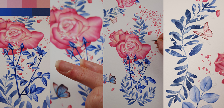heidi willis_artist_bbotanical illustration_Jacobs Creek_wine label_watercolour_rose painting