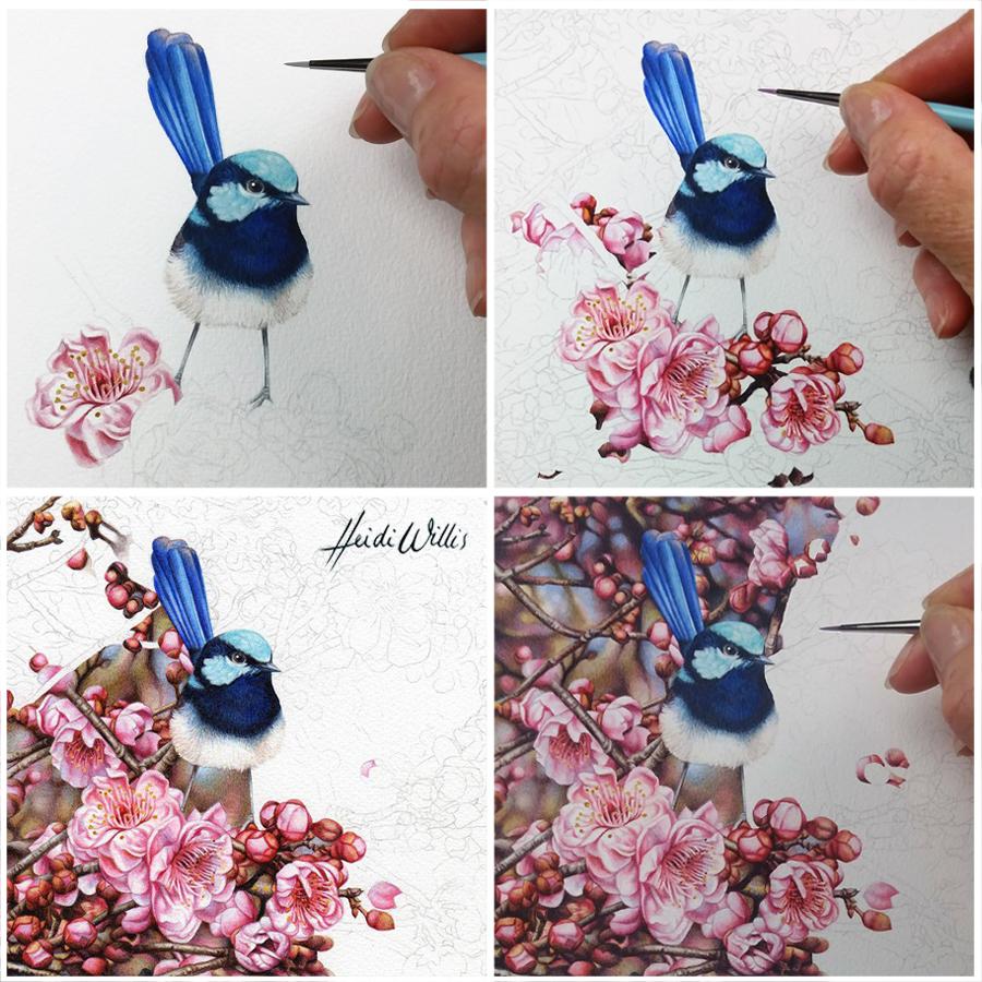heidi willis_blossom_wren painting_watercolour_bird art