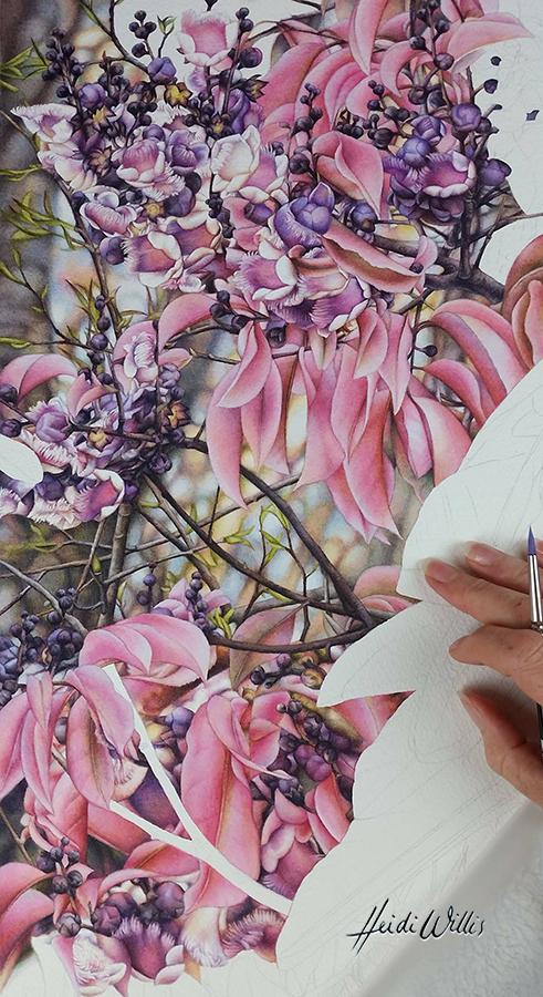 heidi willis_botanical_bird painting_artist_lecythis