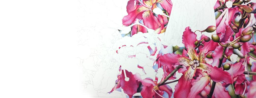 heidi willis_vinaceous amazon_ceiba_bird painting_watercolour