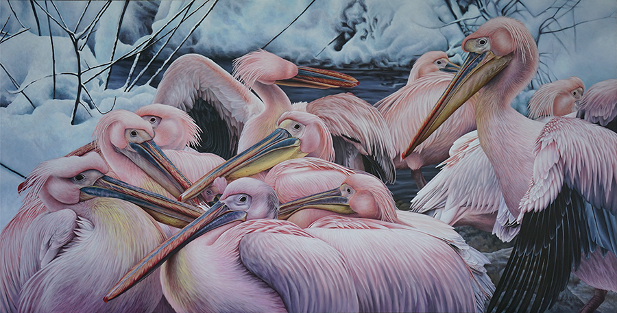 Snow Pelicans Painting