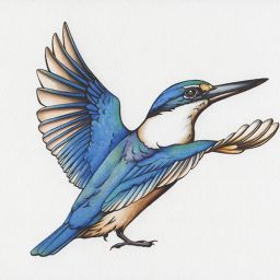 heidi willis_illustrator_bird artist_watercolour_ink drawing_kingfisher illustration