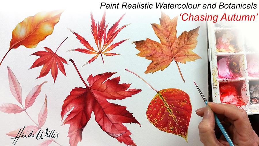 Heidi-Willis_Botanical-Art_Illustration_Realistic-Watercolour_Tutorial_Leaves